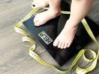 Research Obesity: It's Knowledge That Can Save Your Life
