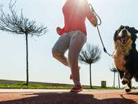 Fitness with Fido: Health for Dog Owners