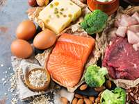 Why Is Protein Important for Weight Loss?