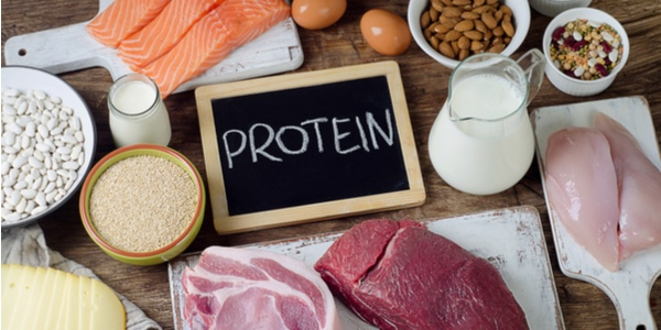 Benefits of Weight Loss with a High Protein, Low-Carb Diet