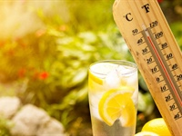 Dehydration: The Hidden Risk to Seniors