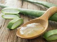 The Ultimate 5 Things You Can Do with Aloe Vera