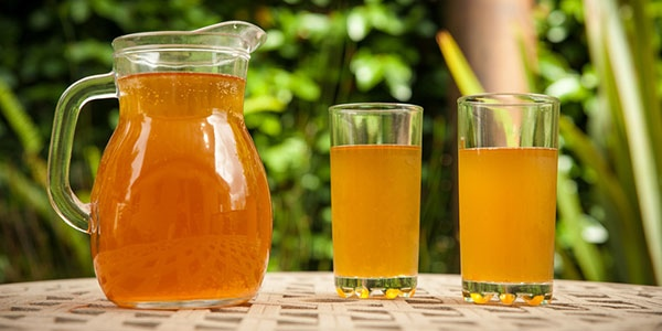 The Truth Behind the Kombucha Craze