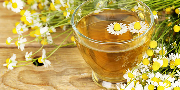 12 Chamomile Tea Health Benefits