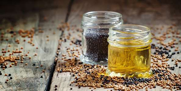 Black Seed Oil Benefits and Uses