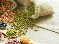 The Lectin Avoidance: For People with a Lot of Food Sensitivities