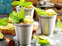 Easy Sugar-Free Mint Julep Recipe