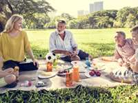 10 Exciting Picnic Activity Ideas
