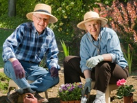 Elder Care Aging Today: There Are More Options Available for Your Loved Ones